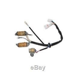 Stator Electrosport Yamaha Yfm 50/80 Raptor/Grizzly/Badger RAPTOR-GRIZ-BH/011600